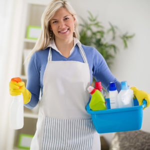 Моющие и чистящие средства REIN